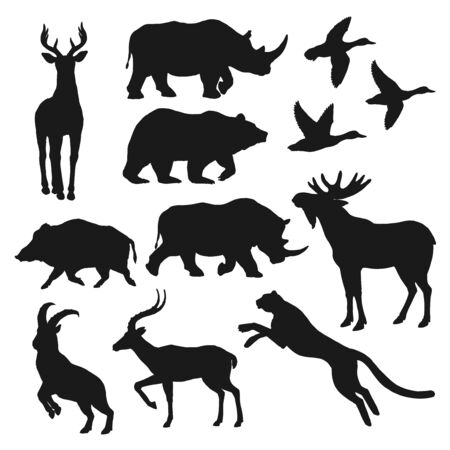 Duck bird, bear and deer wild animal black silhouettes. Hunting sport and safari vector theme. 向量圖像