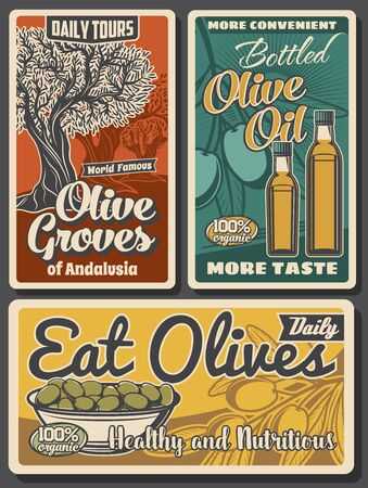 Olive oil bottles, green fruits and trees, vector design of food. Olive branches with leaves, bowl of marinated fruits and extra virgin oil retro posters of mediterranean cuisine cooking ingredients Ilustração