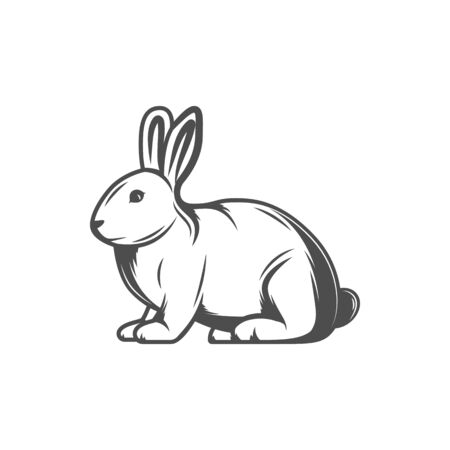 Rabbit isolated forest animal sketch icon. Vector hare fluffy character, sitting cartoon bunny, farm and livestock animal. Rabbit with long ears, Easter holiday symbol. Sweet pet, cute bunny baby