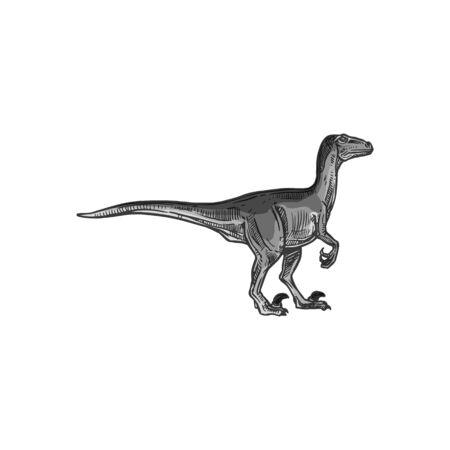 T-rex dinosaur isolated grey Tyrannosaurus sketch. Vector gray Parasaurolophus, Tyrannosauridae or tyrannosaurids, tyrant lizards. Theropod dino extinct animal, coelurosaurian theropod dinosaur