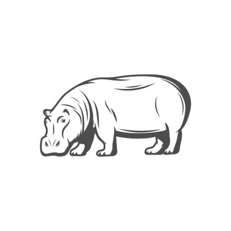 Hippopotamus isolated aquatic animal sketch. Vector hippo behemoth, safari mammal. Common hippopotamus large herbivorous semiaquatic mammal and ungulate, hand drawn full length hippo icon