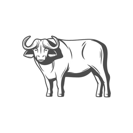 Bison buffalo trophy isolated hand drawn sketch icon. Vector American or European wisent, wild nature symbol. Profile view of wild animal with horns, hunting sport mascot, wood or plains bison Ilustración de vector
