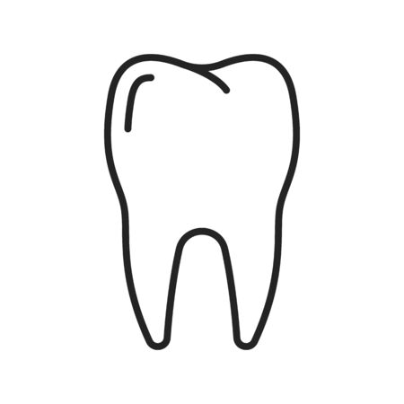 Molar with two roots isolated outline icon. Vector dental teeth, oral hygiene and care, toothache symbol. Premolar tooth linear dentistry and stomatology sign. Healthy smile, dental clinic emblem