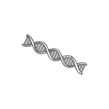 DNA molecule isolated genetic code monochrome icon. Vector helix structure, sequence of chromosomes, cells and viruses chain drawing. Human genes, spiral or helical structure, mutation of atoms