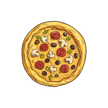 Pizza with mushrooms, olives, salami and greens isolated sketch. Vector fastfood snack, Italian cuisine