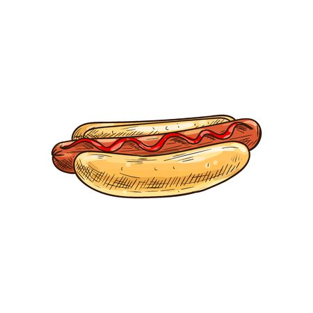 Hotdog sketch isolated bun and sausage with ketchup. Ilustrace