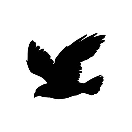 Flying bird silhouette isolated eagle or falcon. Vector black hawk, falconry mascot