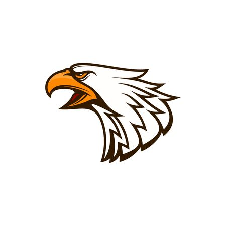 American eagle with open beak isolated falcon bird side view. Vector hawk feathered flying animal