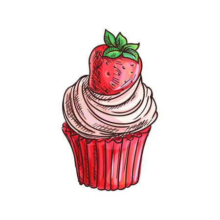 Cake topped by summer berry, strawberry muffin isolated. Vector cupcake dessert sketch