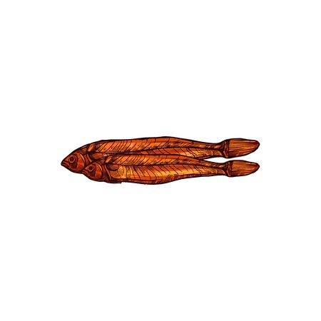 Dried fish isolated beer snack. Vector brown salted cod, dry seafood