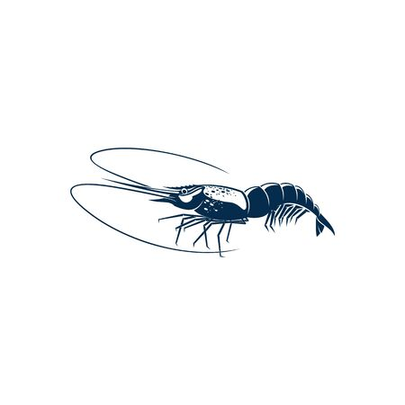 Shrimp isolated shellfish crustaceans. Vector prawn, seafood, underwater marine animal with long whiskers. Palaemon serratus or Crangon crangon, appetizer snack, tiger sea shrimp blue icon