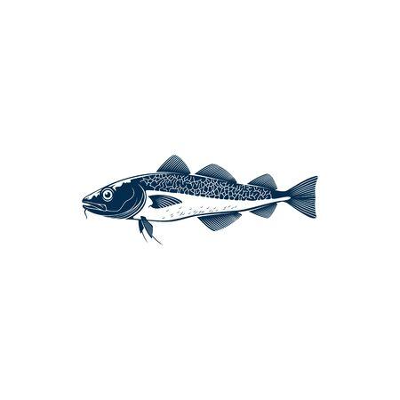 Codfish freshwater gamefish fish isolated monochrome icon. Vector European, Balkhash or yellow perch, river or lake animal, Walleye Zander or scumbidae saltwater fish. Fishing sport mascot