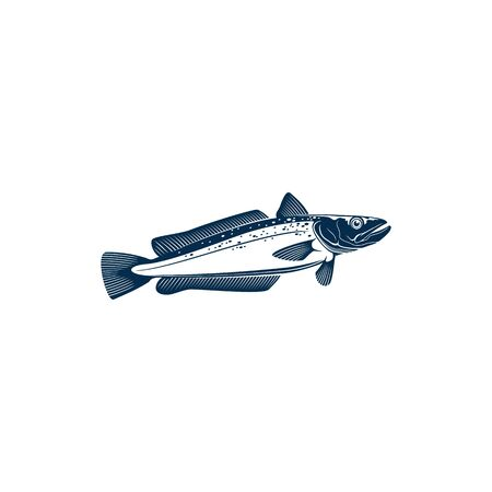 Hake cod-like fish isolated icon. Vector Merlucciidae and Phycidae Atlantic ocean habitat, saltwater cold blooded fish, raw fresh or cooked. European hake, fishing sport mascot or trophy