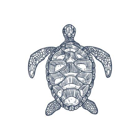 Sea turtle, isolated nautical tortoise Loggerhead monochrome icon. Vector Caretta ocean terrapin with shell, aquarium pet, turtle mascot. Vector reptile, nautical tortoise with cartilaginous carapace