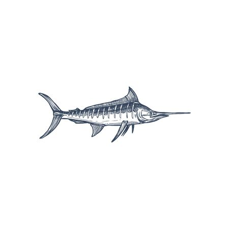 Broadbills fish sword like snout isolated swordfish monochrome icon. Vector long toms marlin, broadbill saltfish with long flattened snout. Predatory game fish with long, flat bill, Xiphiidae