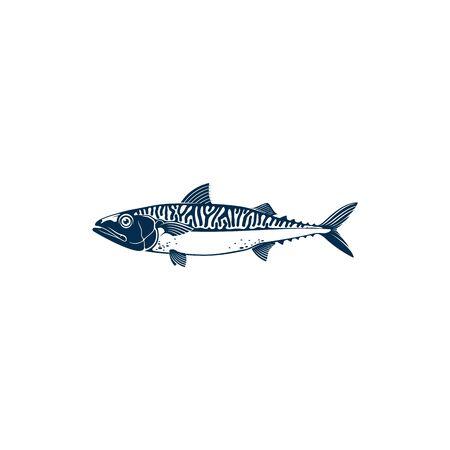 Mackerel common name of different species of pelagic fish, family Scombridae. Vector Short indian mackerel, Atlantic chub Wahoo scombrid fish. Underwater animal, fishing sport trophy isolated Illustration