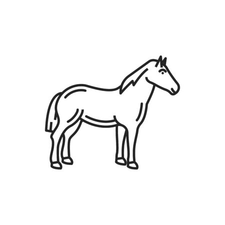 Horse isolated linear monochrome animal icon. Vector stallion mule or small farm pony