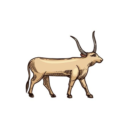 Ancient Egypt worshiped Apis bull isolated horned divinity of Egypt. Vector Hapi-ankh