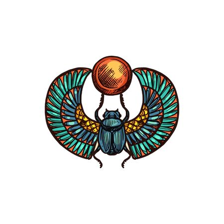 Egyptian scarab isolated winged beetle with sun. Vector sketch of scarabeus, sacred symbol of god Ra
