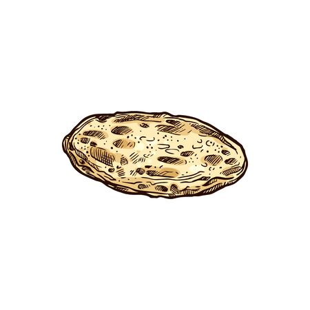 Corn or wheat mexican tortilla isolated sketch.