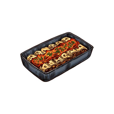 Mexican casserole isolated beef enchiladas in tomato sauce. Vector national food of Mexico
