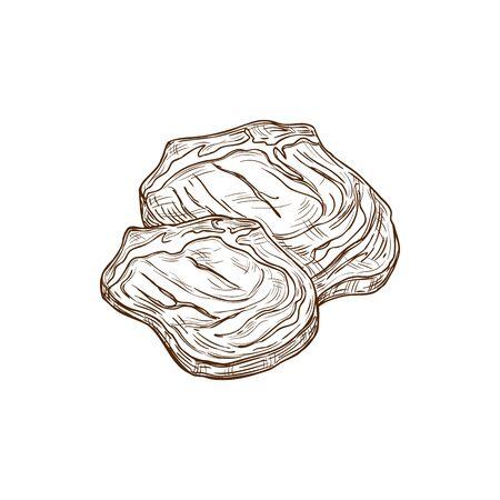 Beefsteak pieces isolated sketch. Meat steak of beef, organic food of animal origin