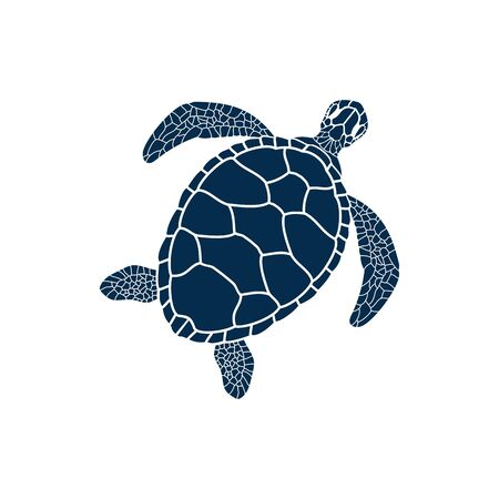 Turtle marine animal isolated sea reptile. Vector nautical tortoise with carapace shell