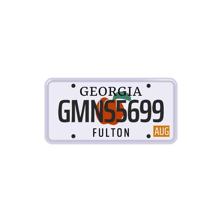 Vehicle registration number plate of American states and city. Vector set of car license number plate