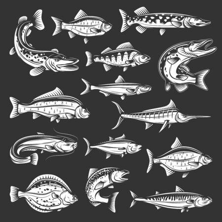 Vector salmon, carp and tuna, marlin, mackerel and perch, pike, swordfish and flounder, crucian and sheatfish, bream and sprat monochrome animals. Sea, ocean and river fish