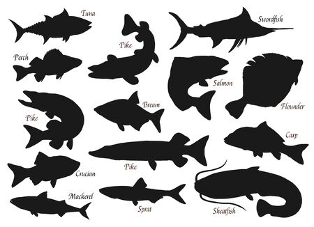 Fishes, silhouette vector icons, ocean, river or sea and lake fishing fish. Pike, tuna or crucian, swordfish and flounder, carp, sheatfish and bream, perch and pike