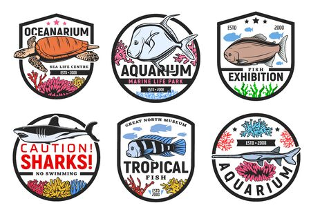 Oceanarium, undersea world aquarium and tropical fish exhibition, vector icons. Wild underwater sea and ocean monsters, animals and exotic tropical fishes exhibition, sharks no swimming warning sign Vectores