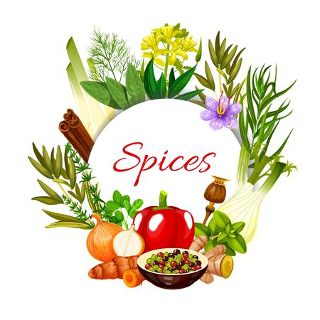 Spices seasonings and food cooking flavorings, vector herbal condiments. Farm grown herbal seasonings cinnamon, ginger and garlic, paprika pepper, rosemary and culinary cinnamon, poppy seeds and basil