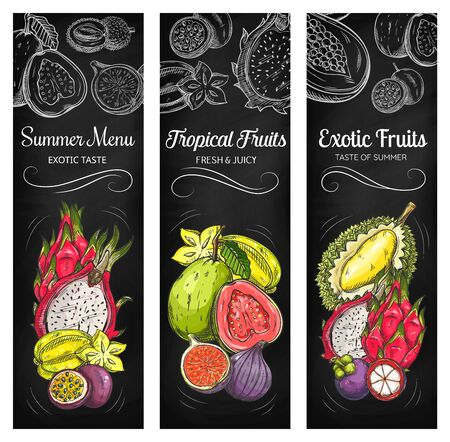 Tropical fruits on chalkboard, vector sketch banners. Exotic tropical meal in chalk sketch on blackboard Durian and guava, mangosteen, carambola and passion fruit, pitaya dragon fruit and ripe figs