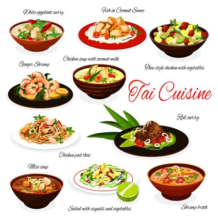 Thai cuisine meals, traditional Thailand chicken soup with coconut milk, meat with vegetables, ginger shrimps in red curry, miso soup and white eggplant curry. Vector restaurant menu dishes Vector Illustratie