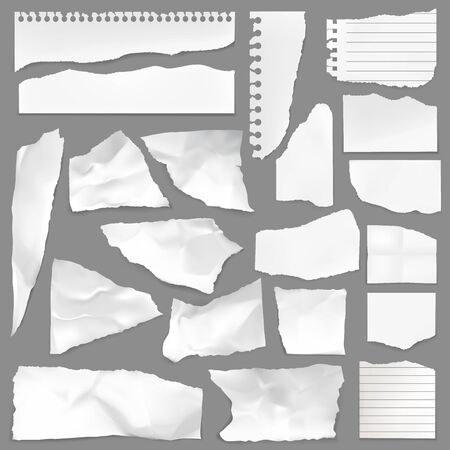 Torn note paper scraps, vector ripped blank pieces and scrapbook notes with lines. Perforated ragged textured memo sheets with spiral holes. Isolated realistic 3d white crumples, rip notebook shreds