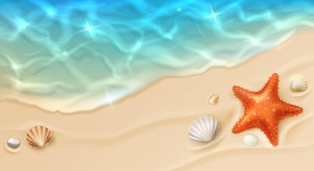 Sea coast with sand, ocean wave, shells and star fish top view. Cartoon vector beach with sandy seaside, blue transparent water surface, pebbles and conch. Paradise island, exotic tropical plage