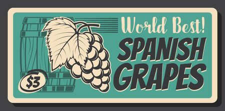 Spanish ripe grape fruits retro banner, vector vintage card. Bunch of ripe grape with leaves and wooden barrel. Vineyard production price tag, Spanish wine factory or shop vintage advertisement