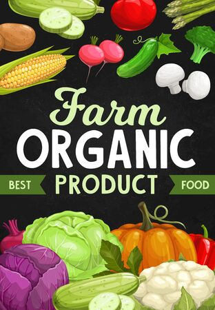 Farmers products, farm vegetables vector veggies. Red cabbage, beet and corn, zucchini, cauliflower and bell pepper, mushrooms, broccoli, cucumber and radish, tomato and potato, asparagus and pumpkin