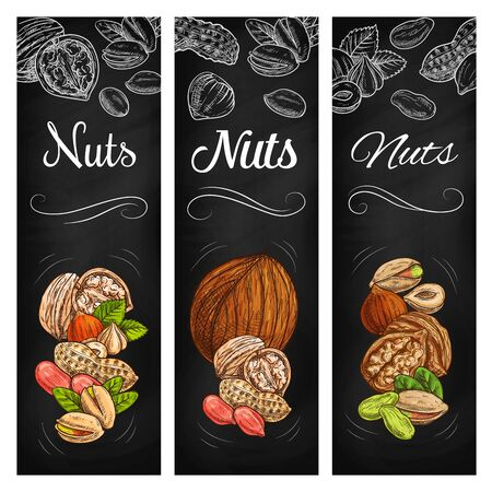 Nut and legume bean sketch chalkboard banners, vector super food. Peanut, pistachio, walnut, hazelnut and coconut seeds with shells, husk and leaves chalk sketches on blackboard