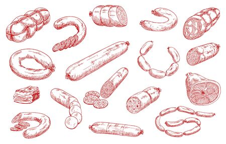 Sausages and meat products vector sketch set. Sliced salami, chorizo and pepperoni, bacon piece, hamon and mortadella, bratwurst or frankfurter sausages. Meat market, butchery, butcher shop products