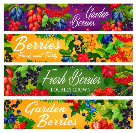 Garden and forest ripe berries vector banners. Blue and japanese honeysuckle, dogwood and rose hip, black, farm red currant, sea buckthorn, guelder rose and blueberry, juniper and gooseberry
