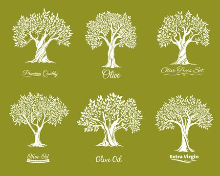 Olive trees farm icons vector set. Agriculure industry. Trees with various shape crown, leaves on brunches and crack in trunk bark. Extra virgin, olive oil label, farm garden tree icon with lettering