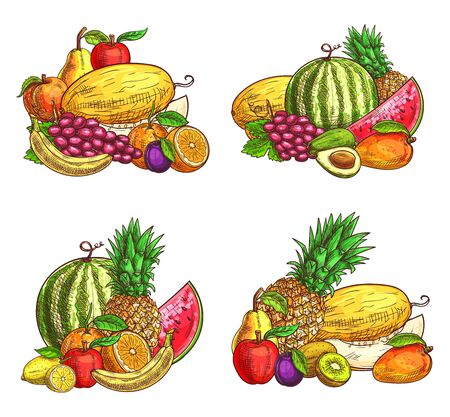 Mix of juicy fruits sketch vector set. Tropical ripe lemon citrus, grape and peach, banana, melon and watermelon, mango and plum, kiwi and avocado, pineapple, pear and apple Stock Illustratie