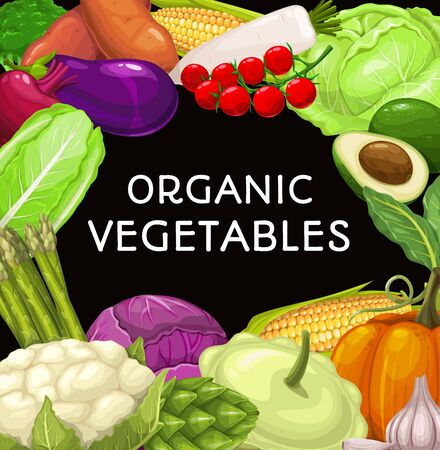 Farm vegetables food vector frame. Broccoli and cauliflower, yam and eggplant, cherry tomato, salad and avocado, corn and radish, chinese cabbage and pumpkin, pattypan squash, artichoke