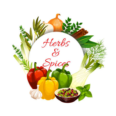 Herbs and spices with vector food seasonings and vegetable condiments. Green basil, pepper and rosemary, thyme, dill, garlic and bell peppers, bay leaf, onion, cinnamon and fennel, onion, cardamom Illustration