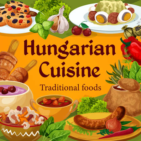 Hungarian cuisine vector dishes sausages with spicy sauce and onion, salad with egg, traditional vegetable stew, braised cabbage with pepper, soup in bread with spices, cookies, Hungary food poster