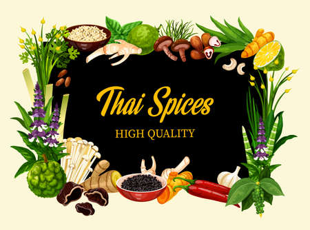 Thai spices and herbs, cooking herbal seasonings and culinary condiments. Asian lemongrass, kaffir lime and chili pepper, shiitake and enoki mushrooms, garlic, horseradish and basil spices. Vector