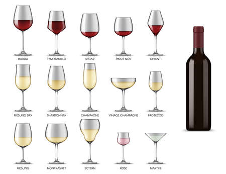 Wine glasses types, white and red wine alcohol drink cups, vector realistic mockup isolated set. Wine glasses shapes and types for Bordeaux, Shiraz, Chardonnay, martini and prosecco wine and champagne