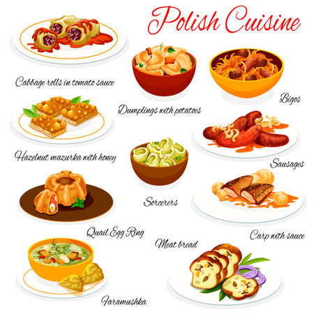 Polish cuisine food dishes menu, Poland traditional meat and fish vector meals. Polish pierogi potato dumplings, cabbage rolls in tomato sauce, carp fish and bigos meat, sausages and hazelnut pastry Vetores