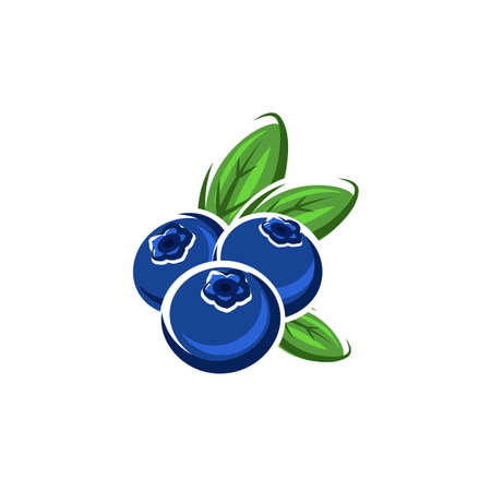 Blueberry or bog whortleberry isolated ripe summer berries. Vector bilberry huckleberry food dessert